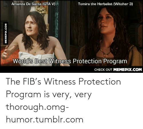 Gta V, Omg, and Tumblr: Amanda De Santa (GTA V)  Tomira the Herbalist (Witcher 3)  World's Best Witness Protection Program  CНЕCK OUT MEМЕРIХ.COM  MEMEPIX.COM The FIB's Witness Protection Program is very, very thorough.omg-humor.tumblr.com