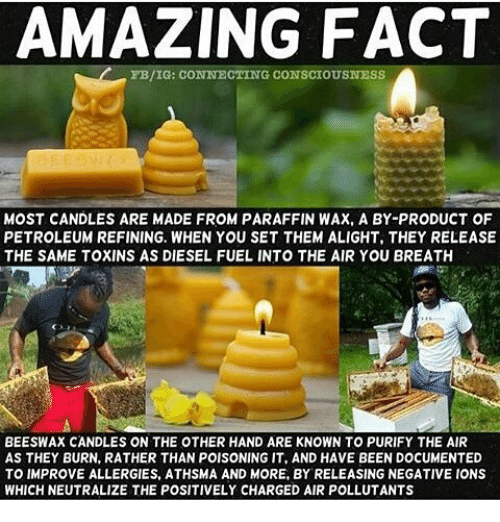 Memes, Diesel, and 🤖: AMAZING FACT  FB/IG: CONNECTING CONSCIOUSNESS  MOST CANDLES ARE MADE FROM PARAFFIN WAX, A BY-PRODUCT OF  PETROLEUM REFINING. WHEN YOU SET THEM ALIGHT. THEY RELEASE  THE SAME TOXINS AS DIESEL FUEL INTO THE AIR YOU BREATH  BEESWAX CANDLES ON THE OTHER HAND ARE KNOWN TO PURIFY THE AIR  AS THEY BURN, RATHER THAN POISONING IT, AND HAVE BEEN DOCUMENTED  TO IMPROVE ALLERGIES, ATHSMA AND MORE. BY RELEASING NEGATIVE IONS  WHICH NEUTRALIZE THE POSITIVELY CHARGED AIR POLLUTANTS