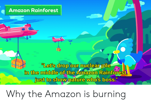 """Amazon, Nature, and The Middle: Amazon Rainforest  """"Let's drop our nuclear pile  in the middle of the Amazon Rainforest,  just to show nature who's boss."""" Why the Amazon is burning"""