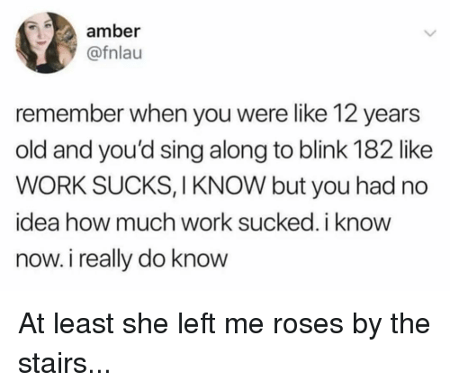 Memes, Work, and Blink 182: amber  @fnlau  remember when you were like 12 years  old and you'd sing along to blink 182 like  WORK SUCKS, I KNOW but you had no  idea how much work sucked, i know  now. i really do know At least she left me roses by the stairs...
