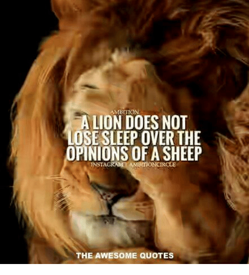 Quotes About Not Lion And Sheep