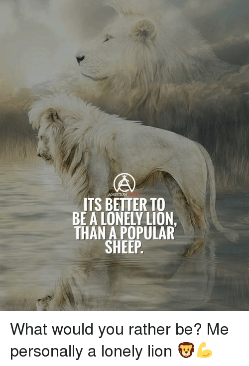 Memes, Would You Rather, and Lion: AMBITION  ITS BETTER TO  BE A LONELY LION.  THAN A POPULAR  SHEEP What would you rather be? Me personally a lonely lion 🦁💪