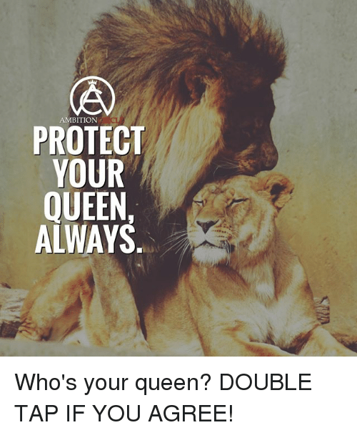 Memes, Queen, and Ambition: AMBITION  PROTECT  YOUR  QUEEN,  ALWAYS Who's your queen? DOUBLE TAP IF YOU AGREE!