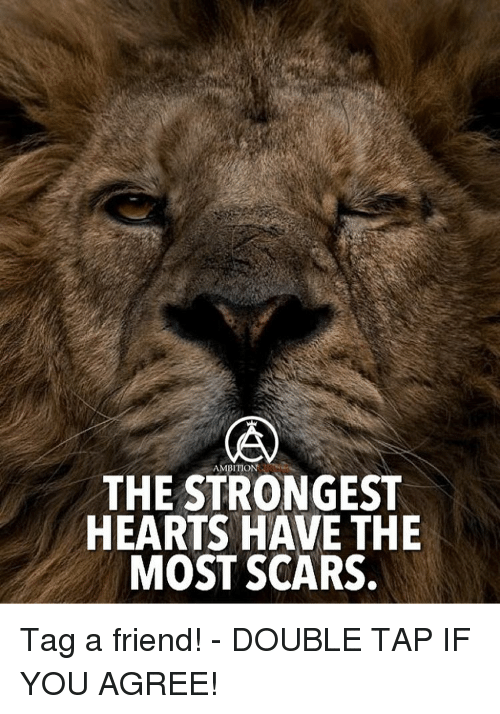 Memes, Hearts, and Ambition: AMBITION  THE STRONGEST  HEARTS HAVE THE  MOST SCARS. Tag a friend! - DOUBLE TAP IF YOU AGREE!