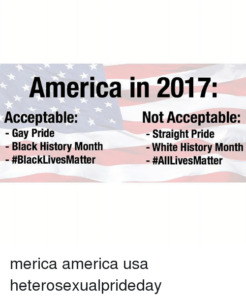 All Lives Matter, America, and Black History Month: America in 2017;  Acceptable:  - Gay Pride  Not Acceptable:  - Straight Pride  Black History Month  #BlackLivesMatter  White History Month  -#AllLivesMatter merica america usa heterosexualprideday