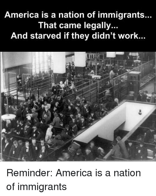 America, Work, and They: America is a nation of immigrants...  That came legally..  And starved if they didn't work...