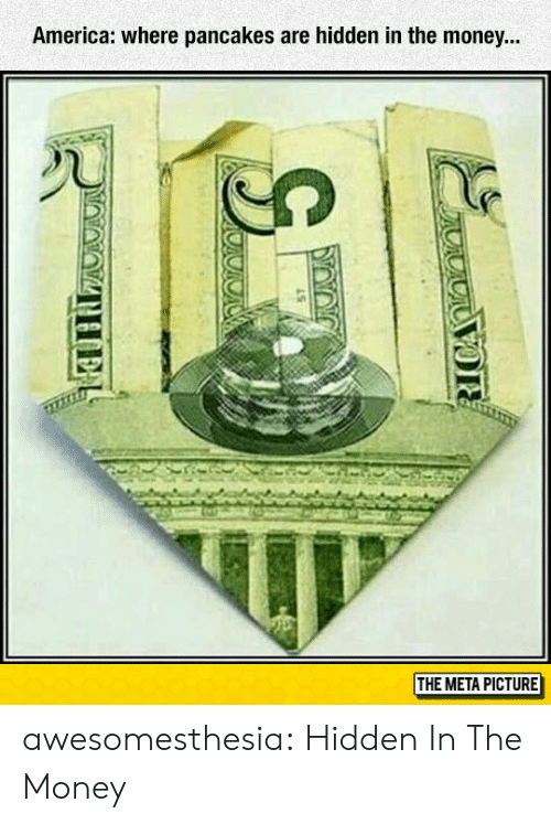 America, Money, and Tumblr: America: where pancakes are hidden in the money...  THE META PICTURE awesomesthesia:  Hidden In The Money