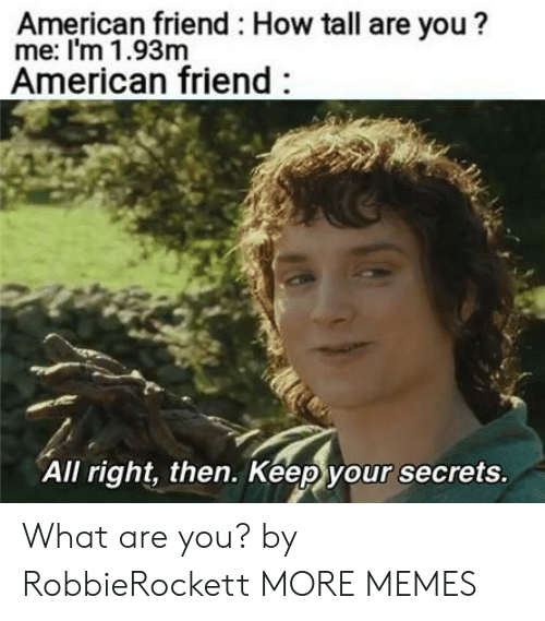 Dank, Memes, and Target: American friend How tall are you?  me: I'm 1.93m  American friend  All right, then. Keep your secrets What are you? by RobbieRockett MORE MEMES
