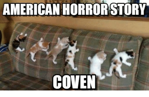 american horror story coven 11258880 ✅ 25 best memes about american horror story coven american,American Horror Story Coven Memes