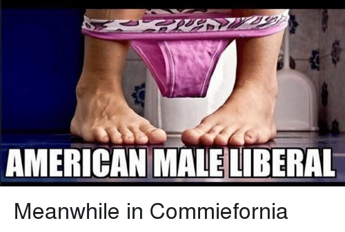 Memes, American, and 🤖: AMERICAN MALE LIBERAL Meanwhile in Commiefornia