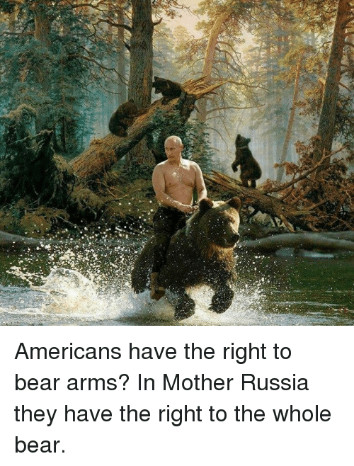 [Image: americans-have-the-right-to-bear-arms-in...159330.png]