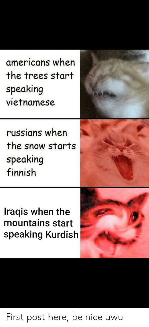 History, Snow, and Trees: americans when  the trees start  speaking  vietnamese  russians when  the snow starts  speaking  finnish  Iraqis when the  mountains start  speaking Kurdish First post here, be nice uwu