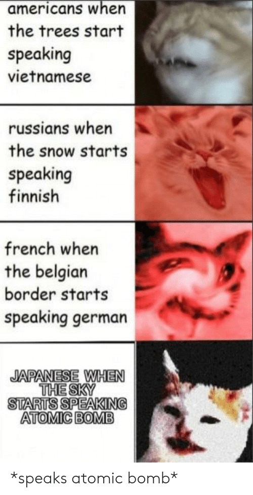 Reddit, Snow, and Trees: americans when  the trees start  speaking  vietnamese  russians when  the snow starts  speaking  finnish  french when  the belgian  border starts  speaking german  THE SKY  STARTS SPEAKING  ATOMIC BOMB *speaks atomic bomb*