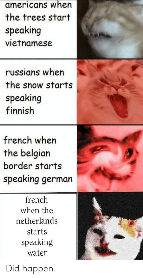 History, Netherlands, and Snow: americans when  the trees start  speaking  vietnamese  russians when  the snow starts  speaking  finnish  french when  the belgian  border starts  speaking german  french  when the  netherlands  starts  speaking  water Did happen.