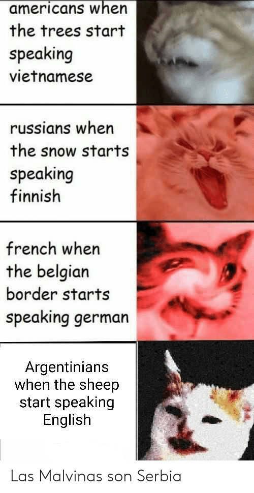 Snow, Trees, and Dank Memes: americans when  the trees start  speaking  vietnamese  russians when  the snow starts  speaking  finnish  french when  the belgian  border starts  speaking german  Argentinians  when the sheep  start speaking  English Las Malvinas son Serbia