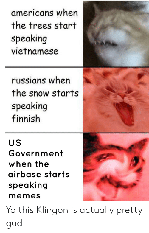 Memes, Yo, and Snow: americans when  the trees start  speaking  vietnamese  russians when  the snow starts  speaking  finnish  US  Government  when the  airbase starts  speaking  memes Yo this Klingon is actually pretty gud