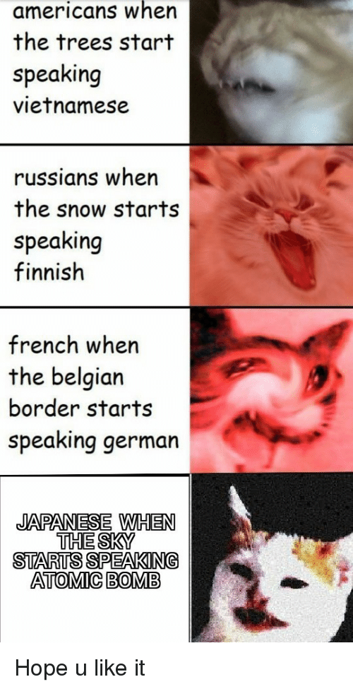 Snow, Trees, and Belgian: americans when  the trees start  speaking  vietnamese  russians wher  the snow starts  speaking  finnish  french when  the belgian  border starts  speaking german  JAPANESE WHEN  THE SKY  STARTS SPEAKING  ATOMIC BOMB Hope u like it