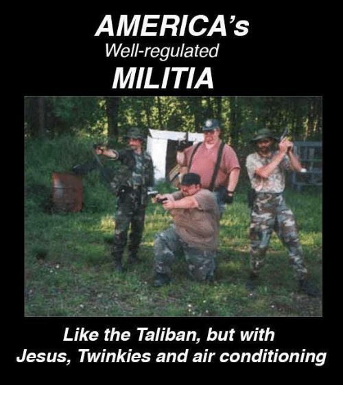 americas-well-regulated-militia-like-the