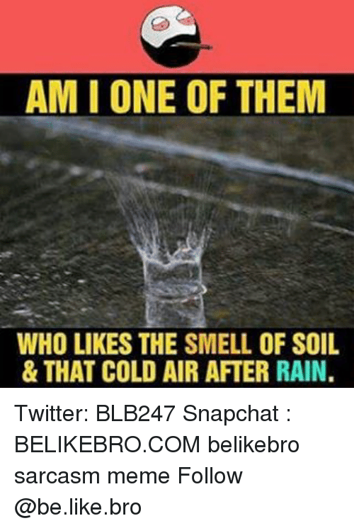 Memes, 🤖, and Air: AMIONE OF THEM  WHO LIKES THE SMELL OF SOIL  & THAT COLD AIR AFTER RAIN. Twitter: BLB247 Snapchat : BELIKEBRO.COM belikebro sarcasm meme Follow @be.like.bro