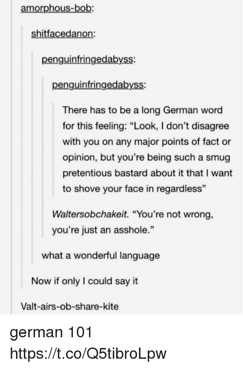 "Memes, Pretentious, and Say It: amorphous-bob:  shitfacedanon  penguinfringedabyss:  penguinfringedabyss:  There has to be a long German word  for this feeling: ""Look, I don't disagree  with you on any major points of fact or  opinion, but you're being such a smug  pretentious bastard about it that I want  to shove your face in regardless  93  Waltersobchakeit. ""You're not wrong,  you're just an asshole.""  what a wonderful language  Now if only I could say it  Valt-airs-ob-share-kite german 101 https://t.co/Q5tibroLpw"
