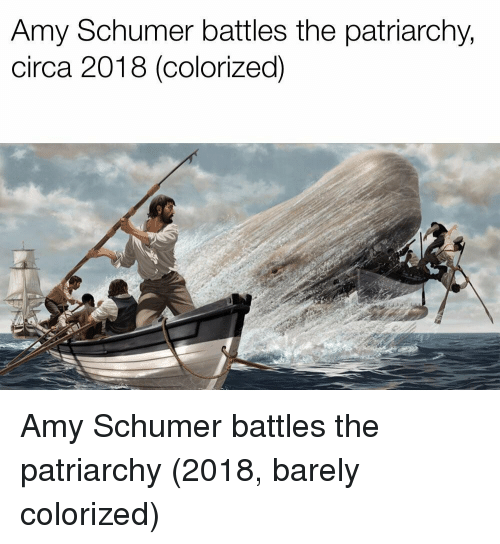 Amy Schumer, Amy, and Battles: Amy Schumer battles the patriarchy,  circa 2018 (colorized) Amy Schumer battles the patriarchy (2018, barely colorized)