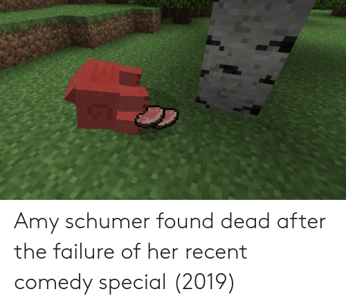 Amy Schumer, Comedy, and Failure: Amy schumer found dead after the failure of her recent comedy special (2019)