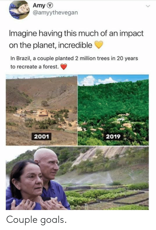 Dank, Goals, and Brazil: @amyythevegan  Imagine having this much of an impact  on the planet, incredible  In Brazil, a couple planted 2 million trees in 20 years  to recreate a forest.  2019  2001 Couple goals.