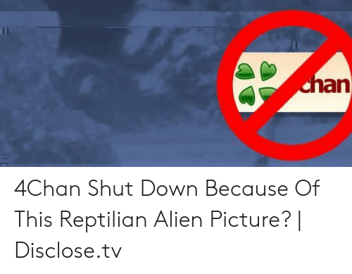 An 4Chan Shut Down Because of This Reptilian Alien Picture