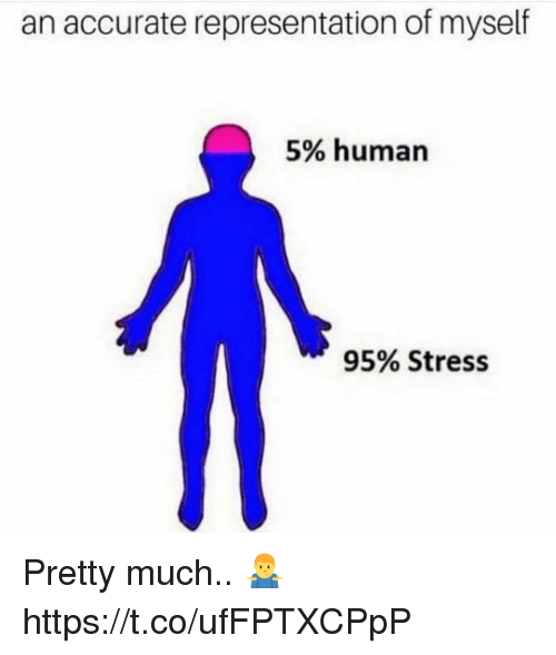 Accurate Representation, Human, and Stress: an accurate representation of myself  5% human  95% Stress Pretty much.. 🤷‍♂️ https://t.co/ufFPTXCPpP