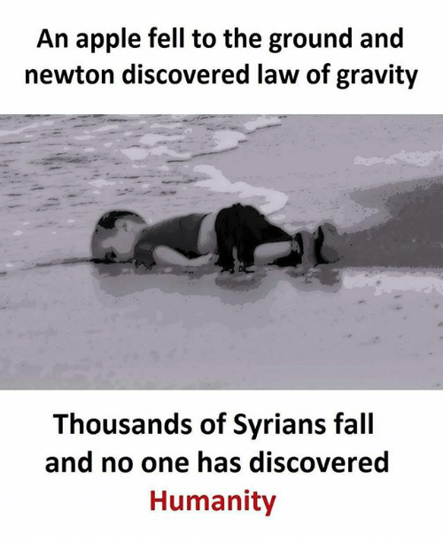 Apple, Fall, and Memes: An apple fell to the ground and  newton discovered law of gravity  Thousands of Syrians fall  and no one has discovered  Humanity