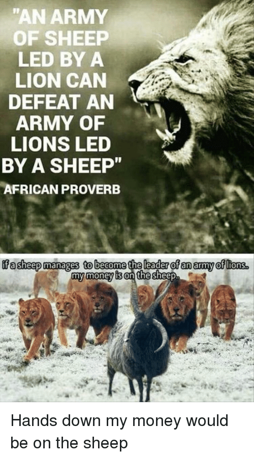 "Money, Army, and Lion: ""AN ARMY  OF SHEEP  LED BY A  LION CAN  DEFEAT AN  ARMY OF  LIONS LED  BY A SHEEP  AFRICAN PROVERB  げasheepmanages tobecome the laderofanatyoffons.  my money is on the Hands down my money would be on the sheep"