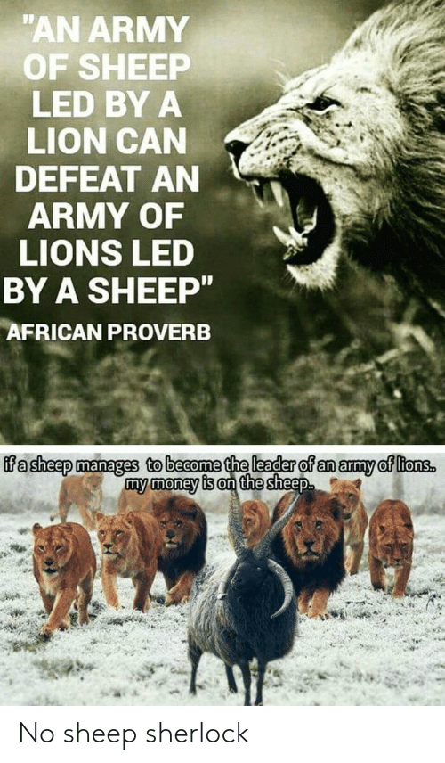 Money, Army, and Lion: AN ARMY  OF SHEEP  LED BY A  LION CAN  DEFEAT AN  ARMY OF  LIONS LED  BY A SHEEP  AFRICAN PROVERB  ffa sheep manages to beaome the leader of an amy of ltonss  my money is on the sheep No sheep sherlock
