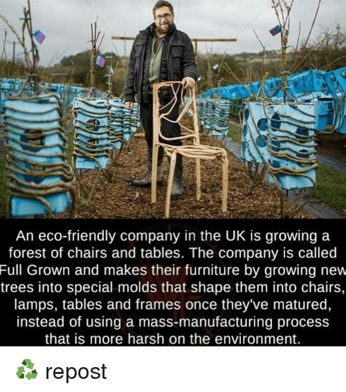 Memes, Furniture, And Harsh: An Eco Friendly Company In The UK IS