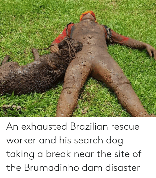 Break, Search, and Brazilian: An exhausted Brazilian rescue worker and his search dog taking a break near the site of the Brumadinho dam disaster