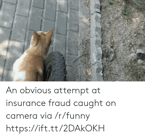 Funny, Camera, and Insurance: An obvious attempt at insurance fraud caught on camera via /r/funny https://ift.tt/2DAkOKH