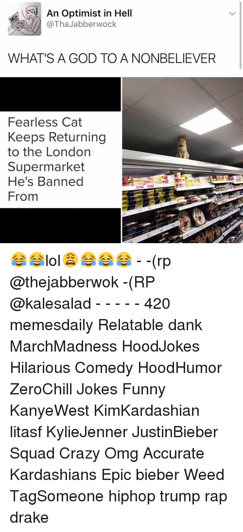 Best Memes About Whats A God To A Nonbeliever Whats A God - Fearless cat keeps returning to the london supermarket hes banned from