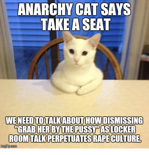 anarchy cat says take a seat weneed to talkabout how 5209751 ✅ 25 best memes about anarchy cat anarchy cat memes