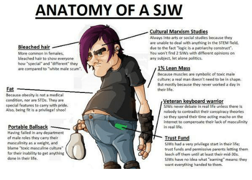 Anatomy Of A Sjw Cultural Marxism Studies Always Into Arts Or Social