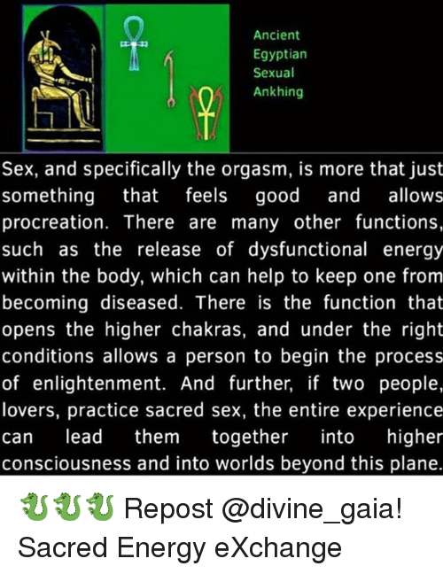 Ancient Egyptian Sexual Ank Hing Sex and Specifically the