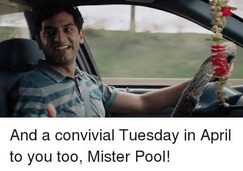 Funny Meme For Tuesday : And a convivial tuesday in april to you too mister pool funny