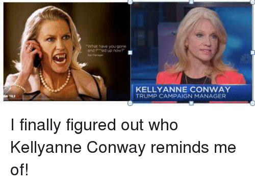 """Conway, Funny, and Campaign: and """"edup now  KELLY ANNE CONWAY  TRUMP CAMPAIGN MANAGER I finally figured out who Kellyanne Conway reminds me of!"""