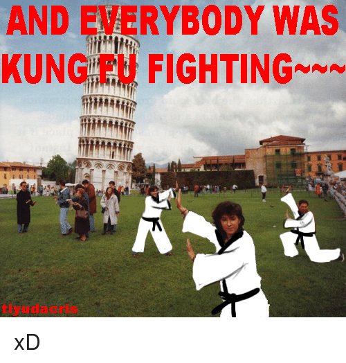 And EVERYBODY WAS KUNG FU FIGHTING*N* Tlyudacris <p>xD<p> | Kung Fu