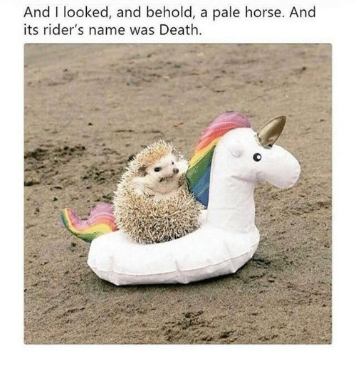 Death, Horse, and Name: And I looked, and behold, a pale horse. And  its rider's name was Death