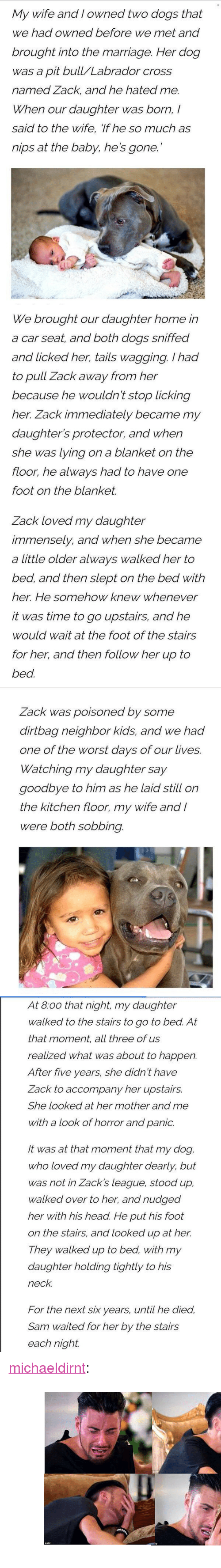 """Dogs, Head, and Marriage: and I owned two dogs  My wife that  we had owned before we met and  brought into the marriage. Her dog  was a pit bull/Labrador cross  named Zack, and he hated me.  When our daughter was born,/  said to the wife, if he so much as  nips at the baby, he's gone.   We brought our daughter home in  a car seat, and both dogs sniffed  and licked her, tails wagging. Ihad  to pull Zack away from her  because he wouldn't stop licking  her. Zack immediately became my  daughter's protector, and when  she was lying on a blanket on the  floor, he always had to have one  foot on the blanket.  Zack loved my daughter  immensely, and when she became  a little older always walked her to  bed, and then slept on the bed with  her. He somehow knew whenever  it was time to go upstairs, and he  would wait at the foot of the stairs  for her, and then follow her up to  bed.   ack was poisoned by some  dirtbag neighbor kids, and we had  one of the worst days of our lives.  Watching my daughter say  goodbye to him as he laid still on  the kitchen floor, my wife and /  were both sobbing.   At 8:00 that night, my daughter  walked to the stairs to go to bed. At  that moment, all three of us  realized what was about to happen.  After five years, she didn't have  Zack to accompany her upstairs.  She looked at her mother and me  with a look of horror and panic.  It was at that moment that my dog,  who loved my daughter dearly, but  was not in Zack's league, stood up,  walked over to her, and nudged  her with his head. He put his foot  on the stairs, and looked up at her.  They walked up to bed, with my  daughter holding tightly to his  neck.  For the next six years, until he died.  Sam waited for her by the stairs  each night. <p><a class=""""tumblr_blog"""" href=""""http://michaeldirnt.tumblr.com/post/143325578779"""">michaeldirnt</a>:</p> <blockquote> <p><figure class=""""tmblr-full""""><img src=""""https://78.media.tumblr.com/3c6060e89d87b8abb7a0f13eb210e313/tumblr_inline_o66wqiGvW21r06evx_5"""