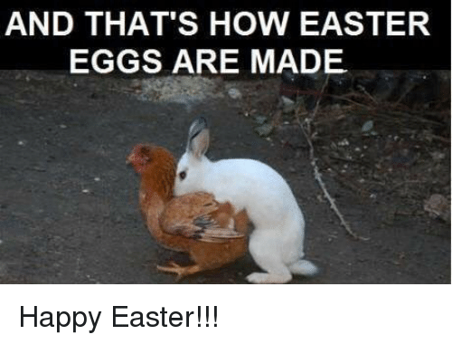 And THAT'S HOW EASTER EGGS ARE MADE Happy Easter ...