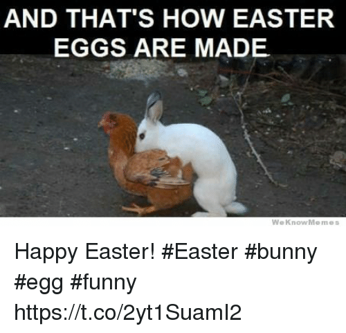 [Image: and-thats-how-easter-eggs-are-made-we-kn...114868.png]