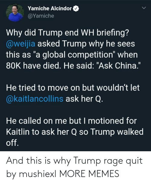 Dank, Memes, and Rage Quit: And this is why Trump rage quit by mushiexl MORE MEMES