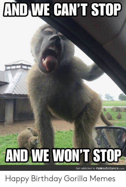 Birthday, Memes, and Happy Birthday: AND WE CAN'T STOP  AND WE WON'T STOP  Get addicted to FUNSubstance.com Happy Birthday Gorilla Memes