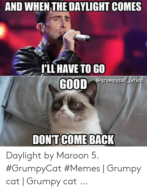 Memes, Grumpy Cat, and Maroon 5: AND WHEN THE DAYLIGHT COMES  'LL HAVE TO GO  grumpycaf yrics  0 Daylight by Maroon 5. #GrumpyCat #Memes | Grumpy cat | Grumpy cat ...