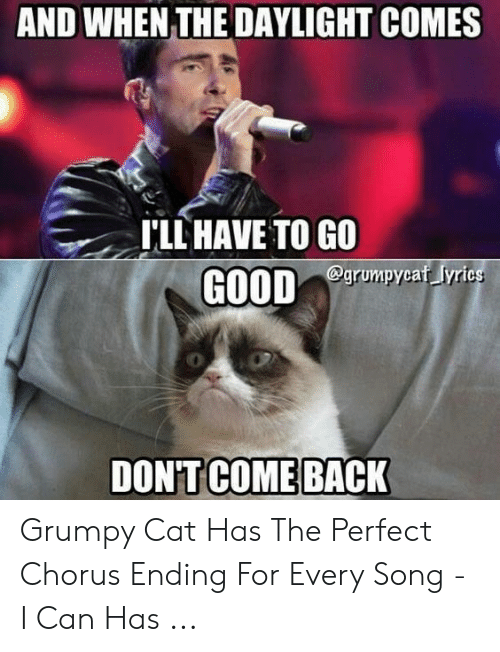 Grumpy Cat, Cat, and Song: AND WHEN THE DAYLIGHT COMES  T'LL HAVE TO GO  egrumpycaf yrics Grumpy Cat Has The Perfect Chorus Ending For Every Song - I Can Has ...